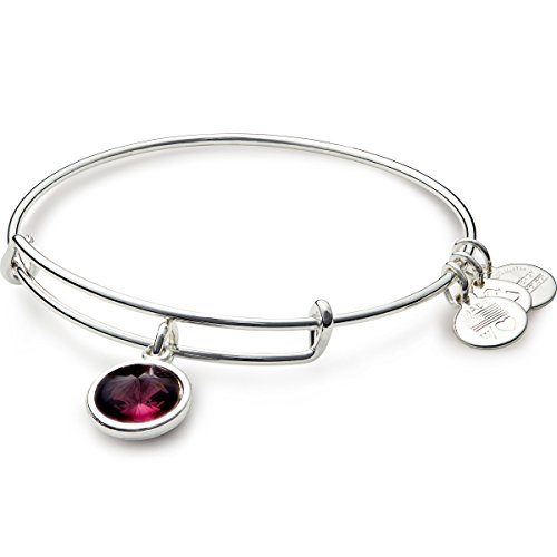 Alex And Ani  Bangle Bar  February Imitation Birthstone Shiny Silver Tone Expandable Bracelet