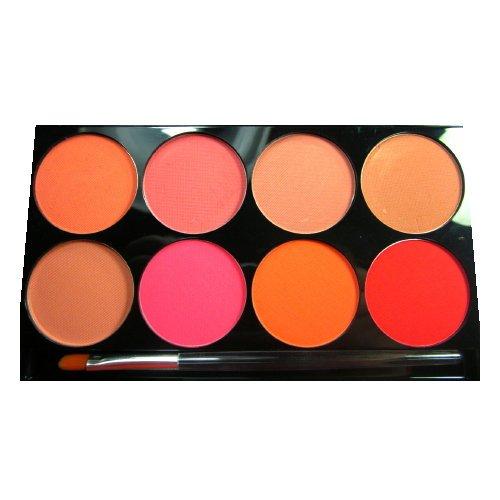(3 Pack) mehron Cheek Powder 8 Color Palette - 8 Colors (並行輸入品) B01N640G99