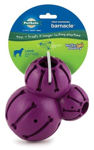 PetSafe Busy Buddy Barnacle Dog Toy, Large