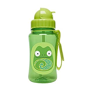 Skip Hop Forget Me Not Kid Straw Bottle, Cody Chameleon