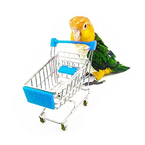 UEETEK Pet Bird Parrot Toys Mini Shopping Cart Intelligence Training Play for Parakeet Budgie Cockatiel(Sky Blue)