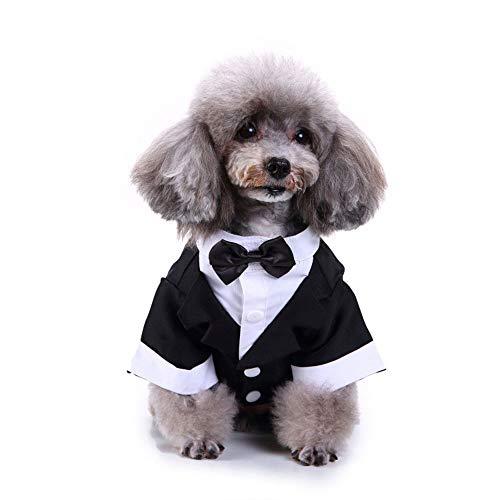 PapiPet Smoking Perros con Corbata pequeña para el Festival, Rayas ...
