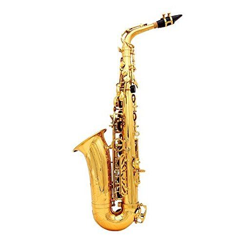 LADE Alto Eb Golden Saxophone Sax Paint Gold With Case & Accessories by SOUND HOUSE 28 (Image #4)