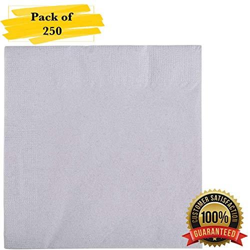MM Foodservice 2- Ply Cocktail Napkins, Beverage Paper Napkins, Set of 250 (Gray) ()