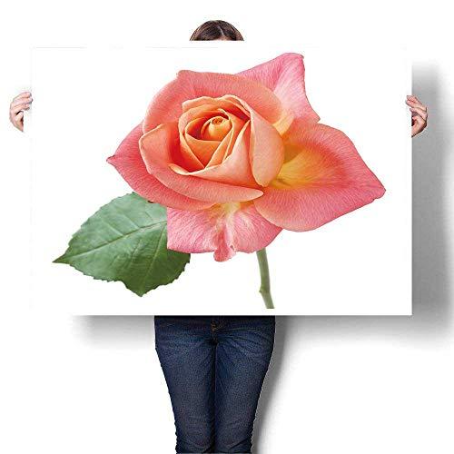 SCOCICI1588 Art Canvas Prints - Lona Decorativo para Pared, diseño de Flor de Loto Rosa con Reflejo en un Estanque, sin...