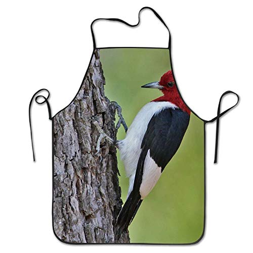 notebepisse Unisex Kitchen Aprons Red Headed Woodpecker Chef Apron Cooking Apron Barbecue Aprons