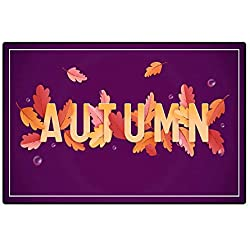 Door Mats for Inside Non Slip BackingAutumn Background Template with Beautiful Leaves and Raindrops Fall Illustration with Paper Art for Web Banner Card Template Wallpaper Cover Invitation in Vector