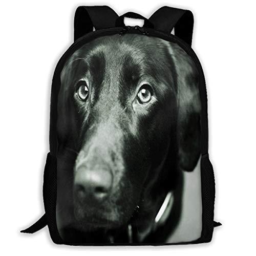 (Backpack For Girls Boys Black Lab Canine Dog Zipper School Bookbag Daypack Travel Rucksack Gym Bag For Man Women)