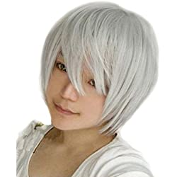 SuperWigy® Hot Sale Cosplay Short Straight Japanese Kanekalon Hair Anime Party Wig+Wig Cap (Silver Gray)