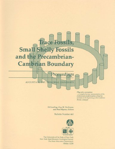 Shelly Fossils, and the Precambrian-Cambrian Boundary: Proceedings, August 8-18, 1987, Memorial University (Bulletin#463 / New ... Museum) (Bulletin / New York State Museum) ()