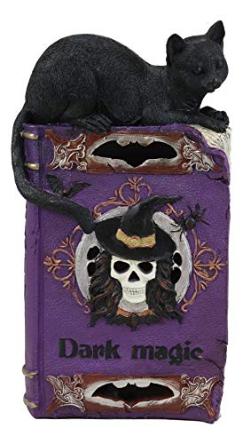 Ebros Witchcraft Sorcery Dark Magic Black Mystical Cat Perching On Purple Book of Spells Figurine with Colorful LED Lights Halloween Skeleton Witch Skull Vampire Bat Decor Sculpture Statue 12