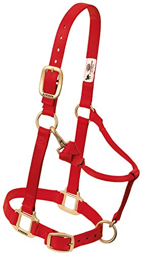 Weaver Leather Original Adjustable Nylon Horse Halter, Red, Arabian/Cob