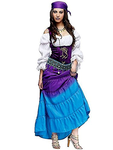 Fortune Teller Costume For Halloween (Fun World Women's Gypsy Moon Costume, Multi, Small)
