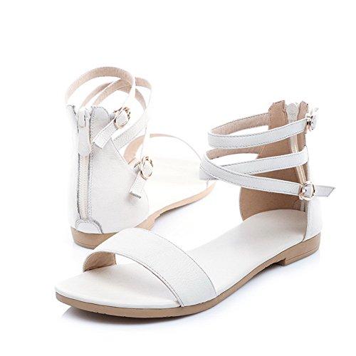 AalarDom Mujer Puntera Abierta Mini Tacón Pu Sólido Sandalias de vestir Blanco(TWOKOU)