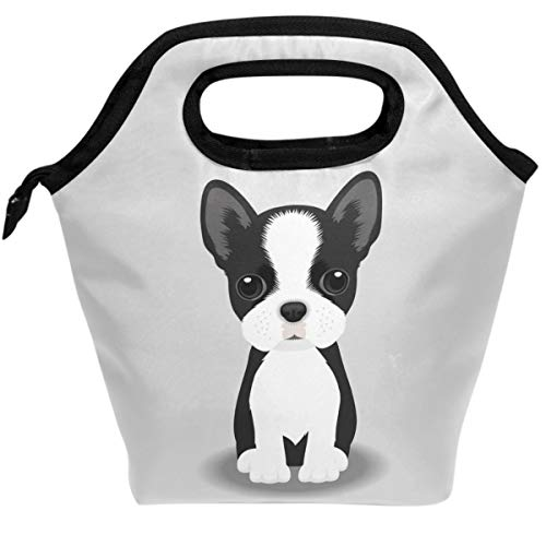 Pfrewn Dog Design Lunch Bag Boston Terrier Puppy Portable Lunch Box Insulated Lunch Tote Soft Bento Cooler Thermal Bags ()