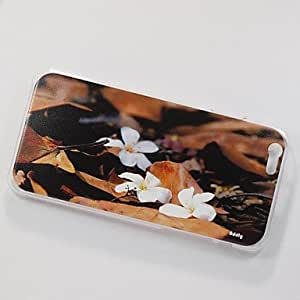 DK_Addly? An HD Photo of Tung Oil Flower Printed on a PC Hard Case for iPhone 6
