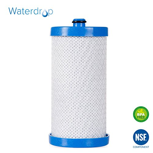 Waterdrop Refrigerator Water Filter Replacement for Electrolux, Sears, Frigidaire WF1CB, WFCB, RG100, NGRG2000, RG...