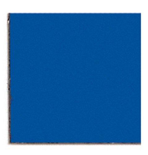 Franken M866 03 Magnetic Symbol 10 x 10 mm 10 g Blue
