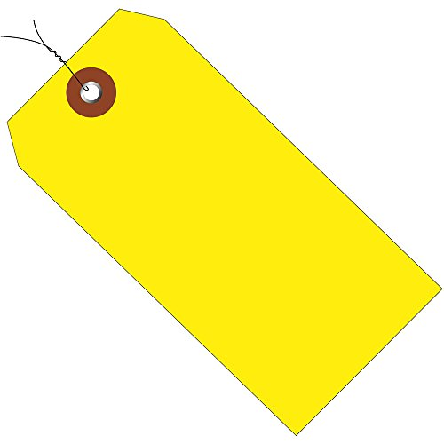 Aviditi Plastic Shipping Tags Pre-Wired, 6 1/4