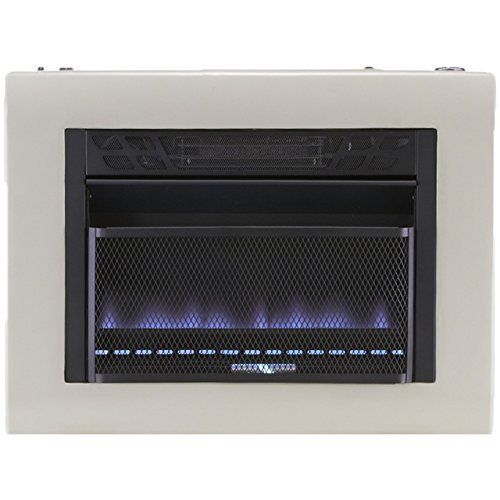 Cedar Ridge Hearth Dual Fuel Vent Free Blue Flame Heater - 20,000 BTU, T-STAT Control (Gas Heater For Fireplace compare prices)