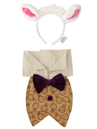 Alice In Wonderland The White Queen Costume (elope Disney Alice in Wonderland White Rabbit)
