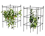 Panacea Expandable Tomato Towers, Black, 20''H, Set of 12