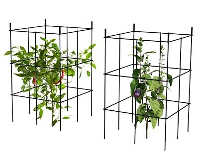 Panacea Expandable Tomato Towers, Black, 20''H, Set of 12 by BestNest