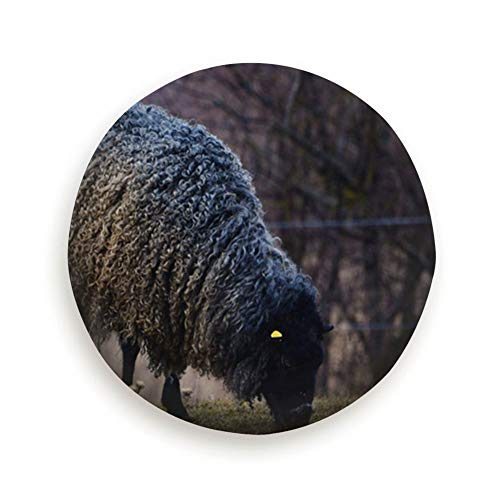 X-Large Gotland Sheep On Meadow Typical Swedish Animals Wildlife Animal Universal Spare Wheel Tire Cover Fit for Truck Camper Van,Jeep,Trailer, Rv, SUV Trailer Accessories 16""