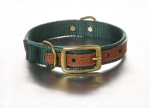 Woofwerks Cooper Overlay Collar, 3/4-Inch by 16-Inch, Hunter Green