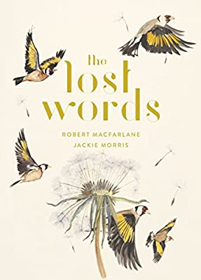 The Lost Words: A Spell Book: Macfarlane, Robert: Amazon.com.au: Books