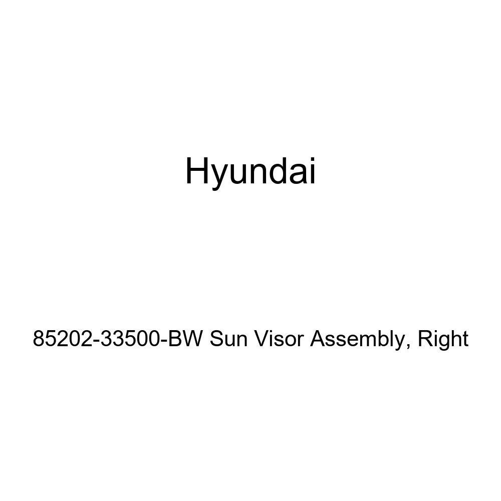 Genuine Hyundai 85202-33500-BW Sun Visor Assembly Right
