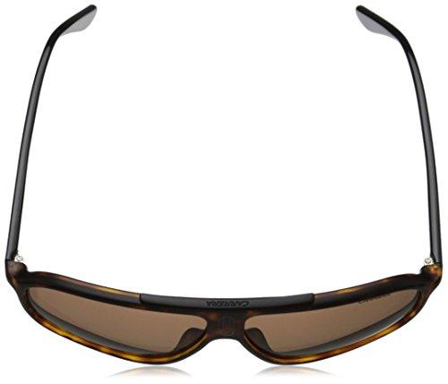 Gafas Carrera Hvna hombre para de Mt Rectangulares Blck 6016 S sol gfxzdwrqf