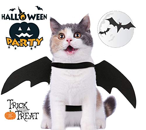 Retro Joey Cat Costume Pet Bat Wings Cat Bat Costume Halloween Costume Pet Apparel for Small Dogs and -