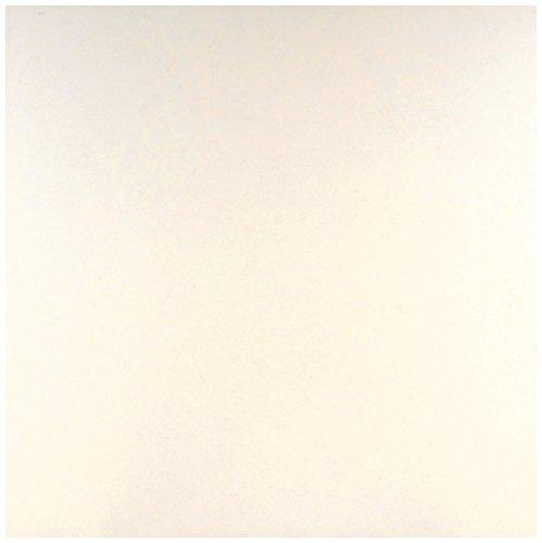 Dal-Tile 2424S1L-P400 Unity Tile, 24