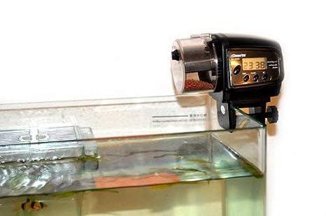 MPTECK @ Comedero alimentador automático para peces y tortugas fish feed: Amazon.es: Productos para mascotas