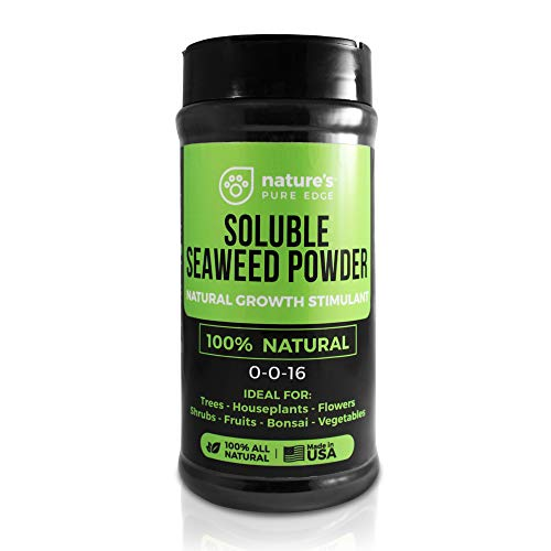 Soluble Seaweed Powder (11 oz) Plant and Root Growth Stimulant