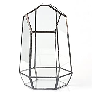 7.4 inches Glass Geometric Succulent Terrarium Balcony Polyhedron Irregular Plant Planter Box Fern Moss Display Flower Pot Indoor Outdoor Decoration Wardian Case Centerpiece for Wedding Coffee Table 5