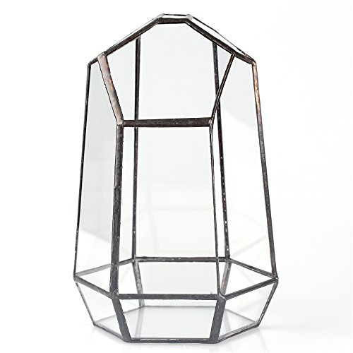 74-inches-Glass-Geometric-Succulent-Terrarium-Balcony-Polyhedron-Irregular-Plant-Planter-Box-Fern-Moss-Display-Flower-Pot-Indoor-Outdoor-Decoration-Wardian-Case-Centerpiece-for-Wedding-Coffee-Table