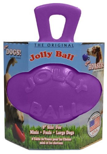 Horsemans Pride Jolly Pets Dual Jolly Ball Dog Toy One Size Purple