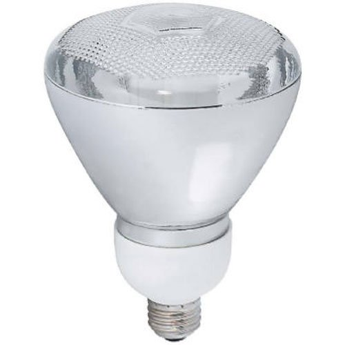 Compact Fluorescent Outdoor Lighting in Florida - 5
