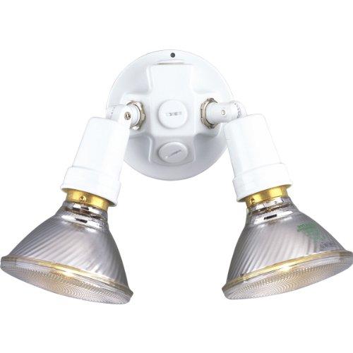(Progress Lighting P5207-30 2 Painted Adjustable Swivel Floodlights,)