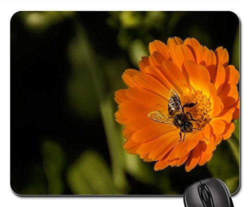 Mouse Pad - Bee Flower Spring Macro Nature Pollen - Us Contact Nectar