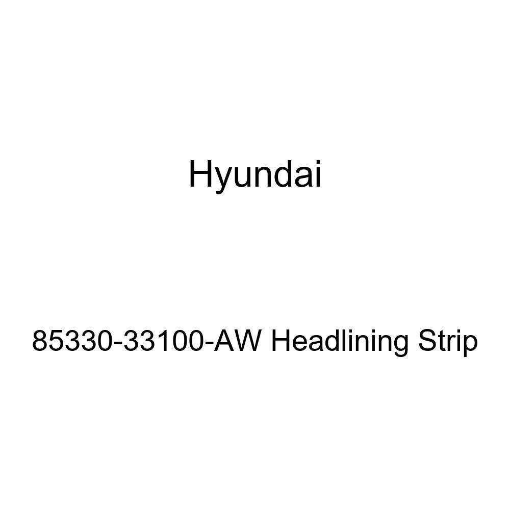 Genuine Hyundai 85330-33100-AW Headlining Strip
