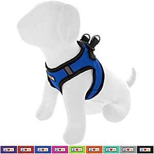 Pawtitas Pet Reflective Mesh Dog Harness, Step in Vest Harness, Comfort Control, Training Walking Your Puppy/Dog Harness… Click on image for further info.