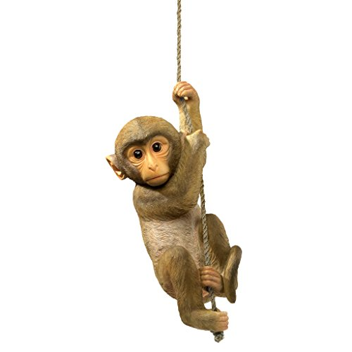 Design Toscano Chico the Chimpanzee Baby Monkey Hanging Animal Statue, 16 Inch, Polyresin, Full Color Chimp Chimpanzee