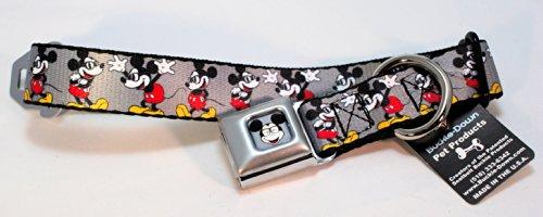 (Buckle Down Disney Mickey Mouse Dog Collars (Regular Ribbon Width (1