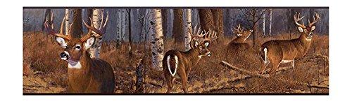 Grey Brown FZ4460BD Deer Wallpaper Border