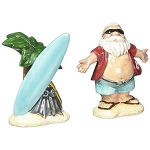 412uuGYWz-L._SS300_ Beach Salt and Pepper Shakers & Coastal Salt and Pepper Shakers