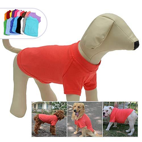 Lobster Dog Costumes Xxl - Lovelonglong 2019 Pet Clothing Dog Costumes Basic Blank T-Shirt Tee Shirts for