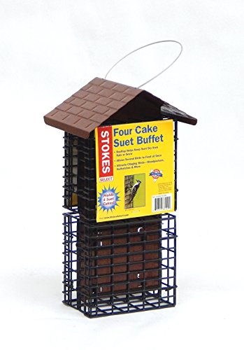 Suet Bird Feeder - Stokes Select Four Cake Suet Buffet Bird Feeder with Metal Roof, Four Suet Capacity